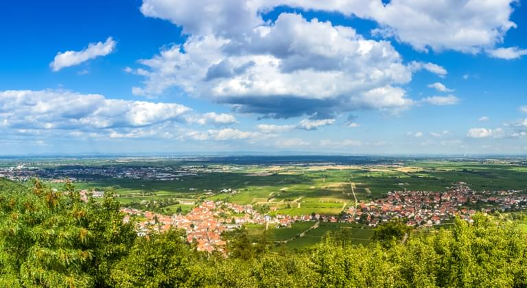 Blick vom Schloß Hambach